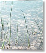 Breath By Breath Metal Print by Sharon Coty