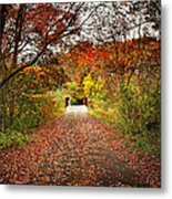 Bridge Ahead Metal Print