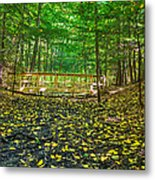 Bridge In Gosnell Big Woods Metal Print