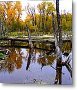 Bridge Over The Pond Metal Print