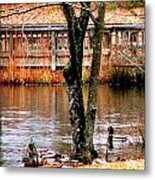 Bridge Spanning Pond Metal Print