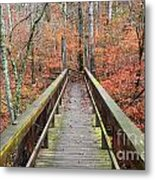 Bridge To Fall Metal Print