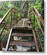 Bridge To Simiez Metal Print