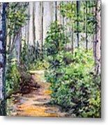 Bridle Path Metal Print
