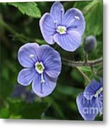 Bright And Blue Metal Print