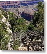 Bright Angel Point View Metal Print