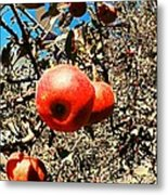 Bright Apples Metal Print