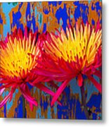 Bright Colorful Mums Metal Print