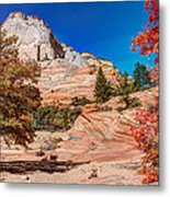 Bright Fall Colors At Zion Metal Print