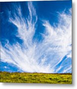 Bright Green Meadow And Deep Blue Sky Metal Print