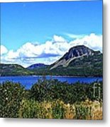 Bright Sunny Day Metal Print