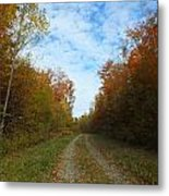 Bright Trail Metal Print