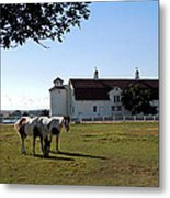 Brighton Barn And Horses Metal Print