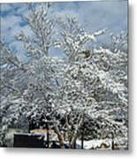 Brilliant Snow Coated Tree Metal Print