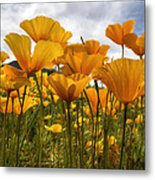 Bring On The Poppies Metal Print