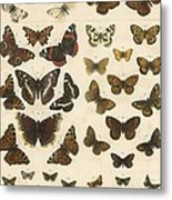 British Butterflies Metal Print