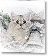 British Longhair Cat Christmas Time II Metal Print by Melanie Viola
