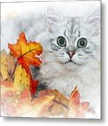 British Longhair Cat Metal Print