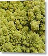 Broccoli Heirloom Metal Print