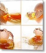 Broken Chicken Eggs Metal Print