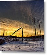 Broken Sustainable Forest Management Metal Print