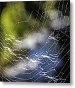 Broken Web Metal Print