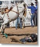 Bronco Bucks Cowboy Metal Print