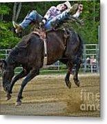 Bronco Cowboy Metal Print