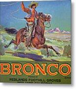 Bronco Oranges Metal Print by American School