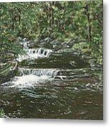 Brook In Spruceton Metal Print
