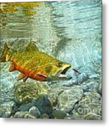 Brook Trout And Silver Doctor Metal Print