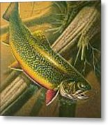 Brook Trout  Hideaway Metal Print