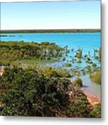 Broome Mangroves Metal Print