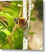 Brown Butterfly 2 Metal Print