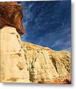 Brown Cap Metal Print by Adam Jewell