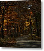 Brown County State Park Metal Print
