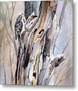 Brown Creeper Metal Print