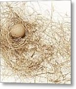 Brown Egg In Bird Nest Sepia Metal Print