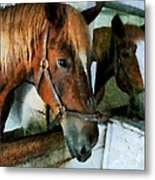 Brown Horse In Stall Metal Print