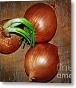 Brown Onions Metal Print
