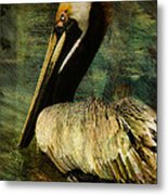 Brown Pelican Beauty Metal Print