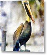 Brown Pelican Metal Print by Lester Phipps