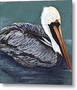 Brown Pelican On Water Metal Print