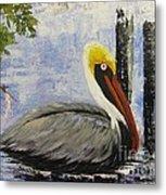 Brown Pelican Revisited Metal Print