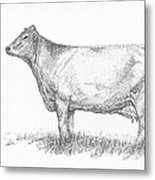 Brown Swiss Dairy Cow Metal Print by J E Vincent