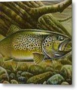 Brown Trout Log Metal Print by Jon Q Wright