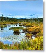 Browns Tract Inlet Waterway Metal Print