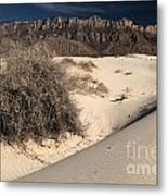 Brush In The Dunes Metal Print