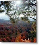 Bryce Canyon 3 Metal Print