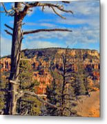 Bryce Canyon Cliff Tree Metal Print